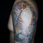 虎 (1)